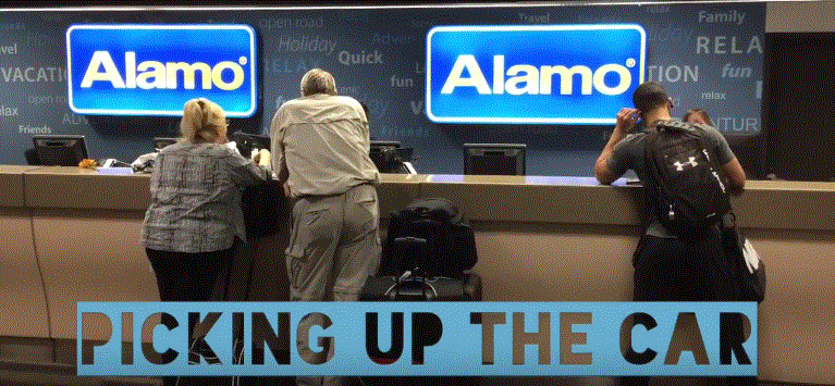 Alamo Car Hire Reviews